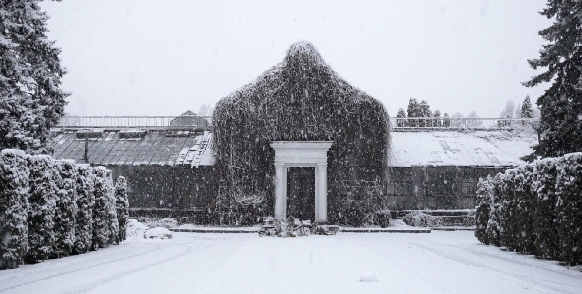 Risultati immagini per THE WINTER GARDEN'S TALE by simon mozgovyi